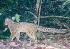 Photo prise en septembre 2003